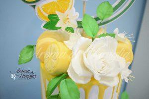 torta-limoni3